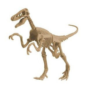 exploration and fossils-toys
