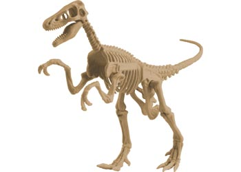 Dig Your Own Velociraptor Fossil