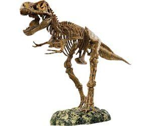 Animal Planet Tyrannosaurus