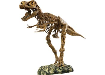Animal Planet – Tyrannsaurus Rex Skeleton