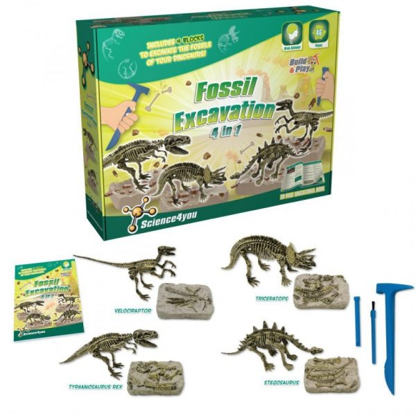 Fossil Excavation - 4 in 1