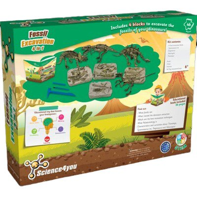 Fossil Excavation – 4 in 1