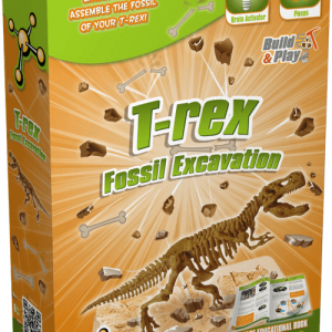 T-Rex Fossil Excavation
