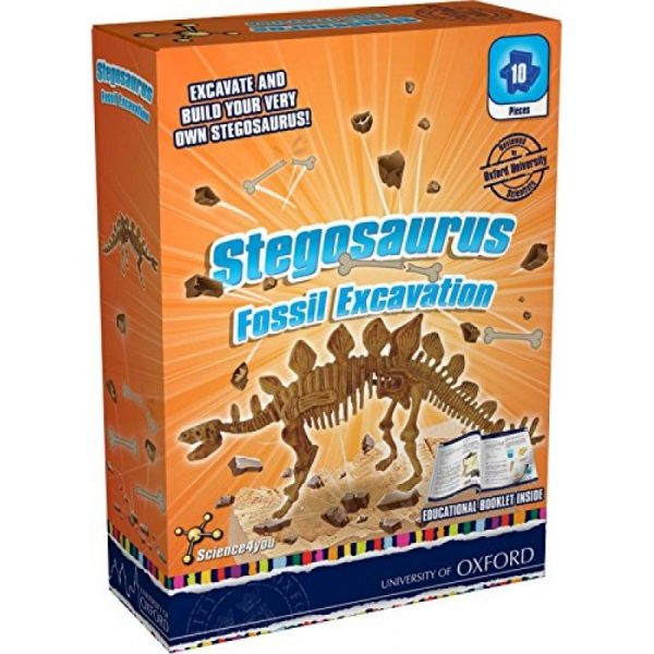 stegosaurus-800×800