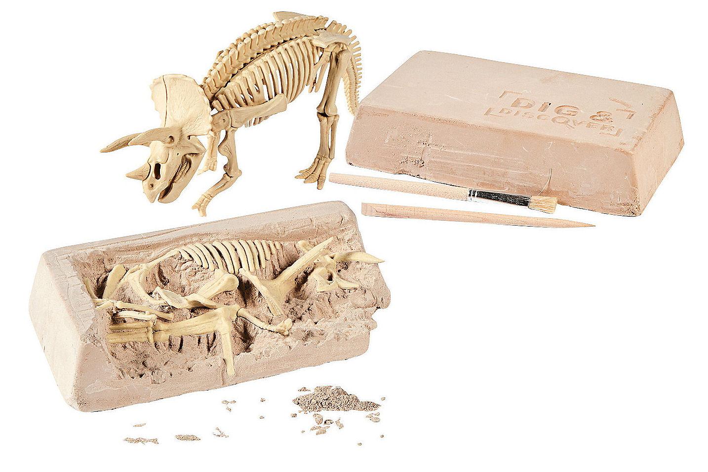 Triceratops Excavation kit