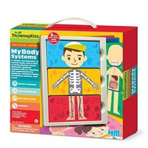 4M - My Body System