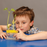 Root Science Kit3