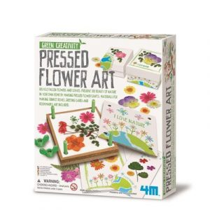 4M Green Science - Pressed flower art