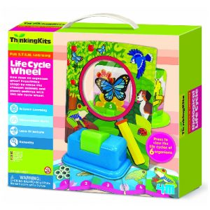 4M Thinking Kits- Life Cycle Wheels
