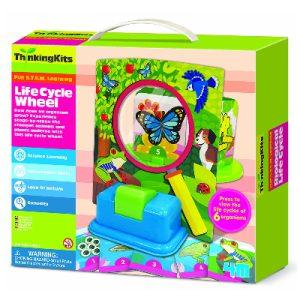 4M Thinking Kits- Life Cycle Wheels