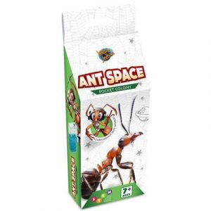 Ant Farm Pocket Colony