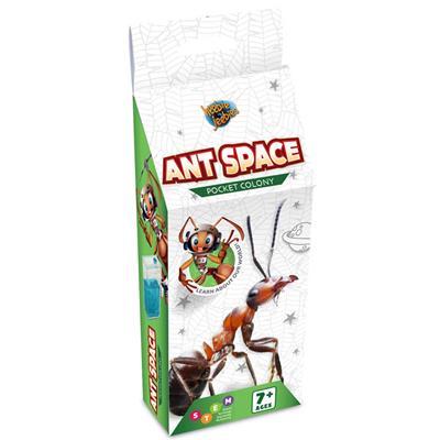 Ant Farm Pocket Colony